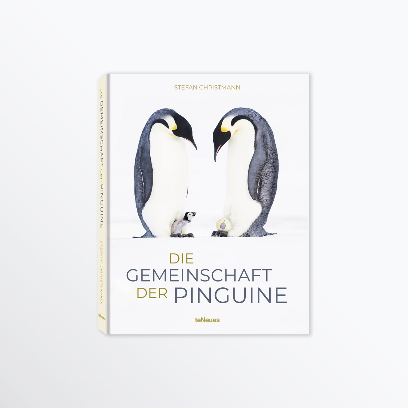 Book title Penguin (A Story of Survival)